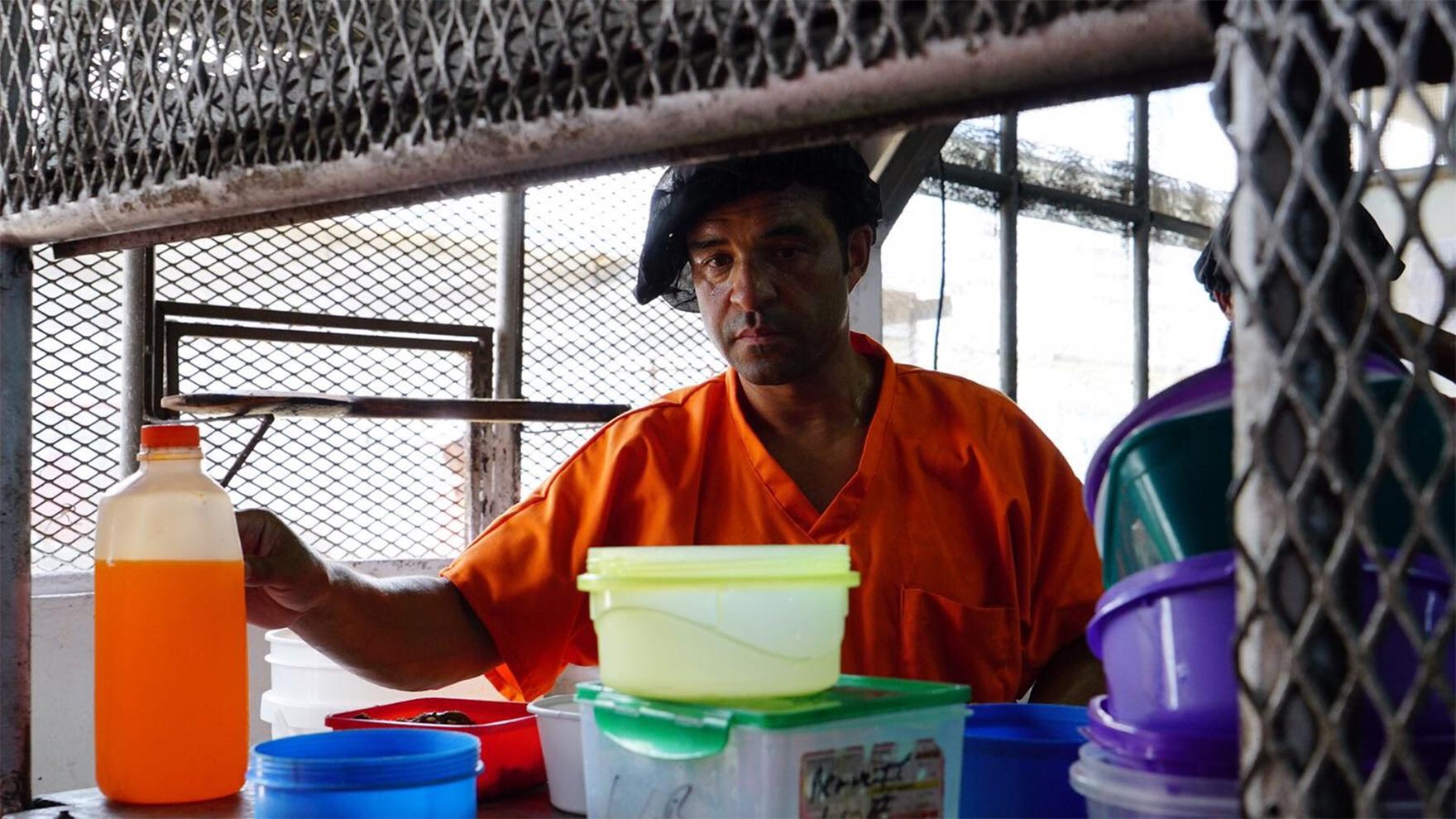 RR-as-Belize-Prisoner